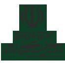 روند تولید بخش معدن و فولاد از نگاه آمار رسمی وزارت صمت
